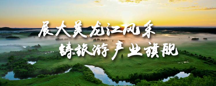 黑龙江省12博网址开户12博官网手机版下载:立足全域开发 引领全省12bet备用网站业态发展